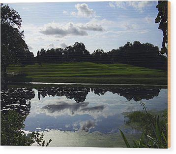 Middleton Place II Wood Print by Flavia Westerwelle