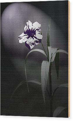 Midnight Bloom Wood Print