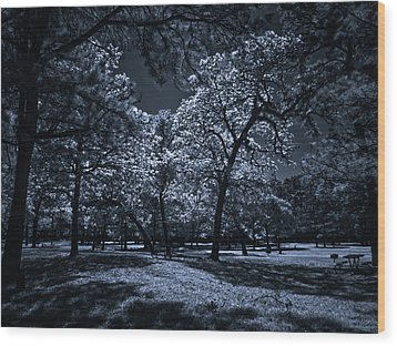 Wood Print featuring the photograph Midnight Blues by Linda Unger