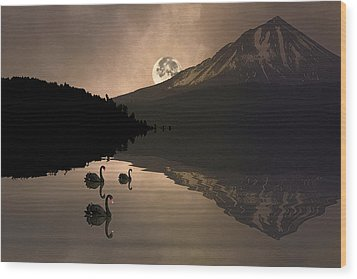 Wood Print featuring the photograph Midnight Moods Swan Lake In The Moonlight by Diane Schuster