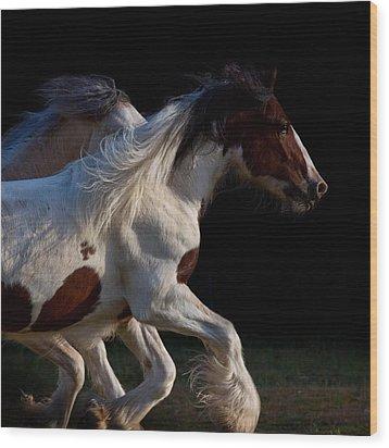 Midnight Run Wood Print by Sharon Jones