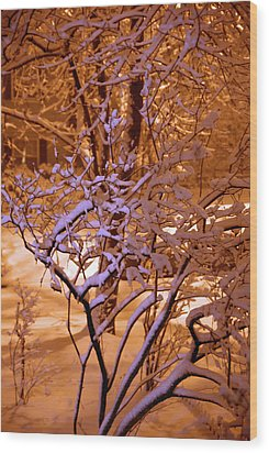 Midnight Snow Wood Print by Ellen Andrews