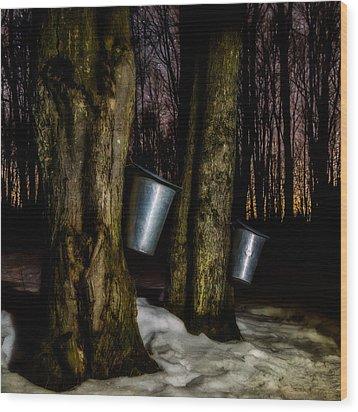 Midnight Sugar Wood Print