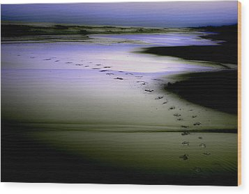 Wood Print featuring the photograph Midnight Swim by Gray  Artus
