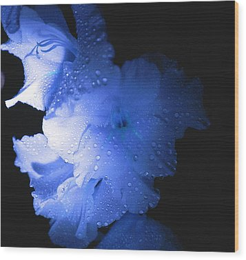 Midnite Aroma Blue Wood Print by Debbie May