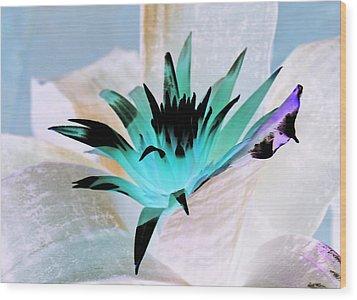 Midori Blue Wood Print by James Granberry