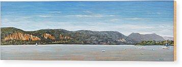 Midsummer On The Hudson Wood Print by Douglas Keil