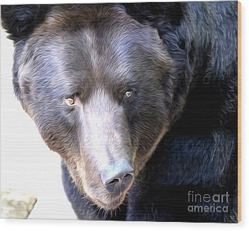 Mighty Black Bear Wood Print by Anne Raczkowski