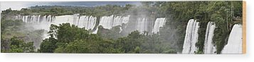 Mighty Iguazu Wood Print