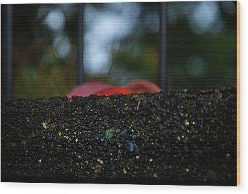 Miksang 2 Autumn Rain City Wood Print by Theresa Tahara