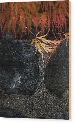 Miksang 5 Autumn Wood Print by Theresa Tahara