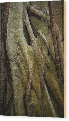 Miksang 8 Strangler Wood Print by Theresa Tahara