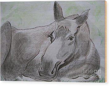 Mildred The Moose Resting Wood Print by Stella Sherman