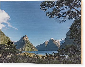 Wood Print featuring the photograph Milford Sound Overlook by Gary Eason