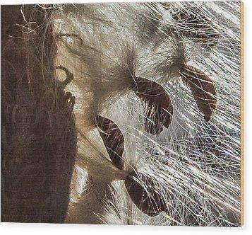 Milkweed Seed Burst Wood Print