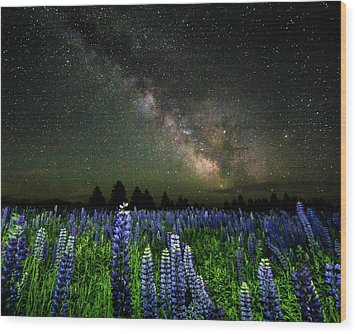 Milky Way And Lupine Wood Print by Cody Gould