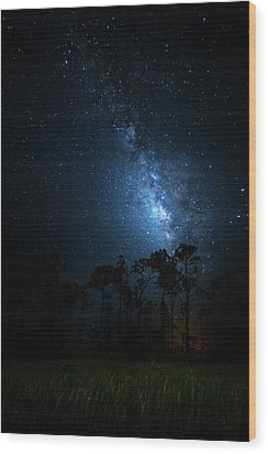 Wood Print featuring the photograph Milky Way At Big Cypress National Preserve by Mark Andrew Thomas