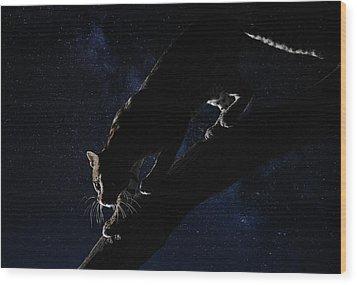 Wood Print featuring the photograph Milky Way Ocelot by Wade Aiken