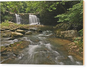 Mill Creek Falls  West Virginia Wood Print