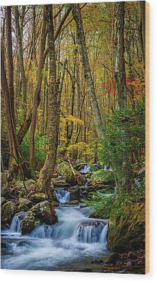 Mill Creek In Fall #1 Wood Print