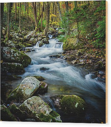 Mill Creek In Fall #3 Wood Print