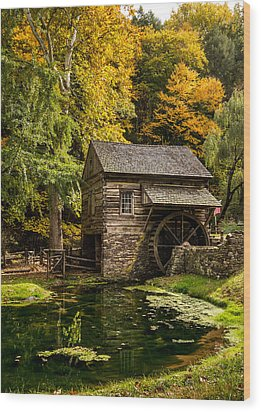 Mill Pond Wood Print by Glenn DiPaola