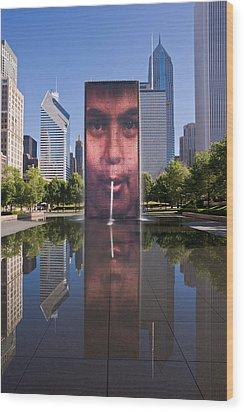 Millennium Park Fountain And Chicago Skyline Wood Print by Steve Gadomski