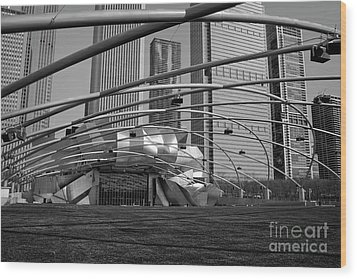 Millennium Park IIi Visit Www.angeliniphoto.com For More Wood Print by Mary Angelini