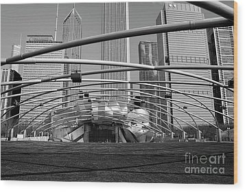 Millennium Park Iv Visit Www.angeliniphoto.com For More Wood Print by Mary Angelini