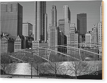 Millennium Park V Visit Www.angeliniphoto.com For More Wood Print by Mary Angelini