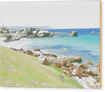 Miller's Point 2 Wood Print by Jan Hattingh