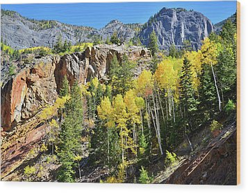 Wood Print featuring the photograph Million Dollar Highway 550 by Ray Mathis