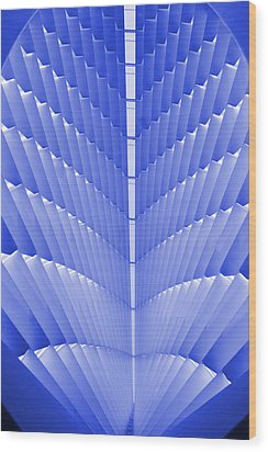 Milwaukee Art Museum Abstract Wood Print by Elvira Butler