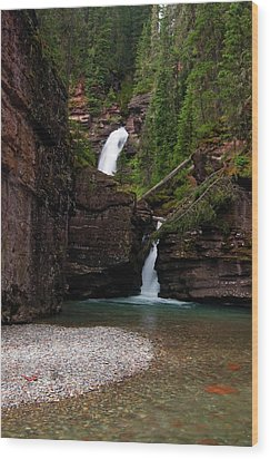 Wood Print featuring the photograph Mineral Creek Falls by Steve Stuller