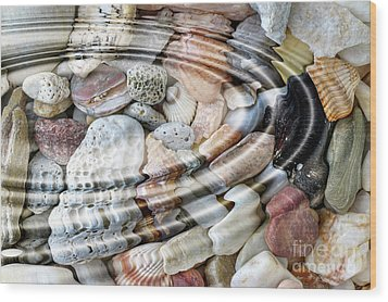 Wood Print featuring the digital art Minerals And Shells by Michal Boubin