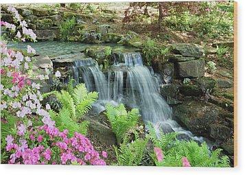 Mini Waterfall Wood Print by Sandy Keeton