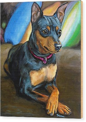 Miniature Pinscher Formal Wood Print by Dottie Dracos