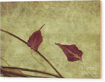 Minimal Art Wood Print by Aimelle