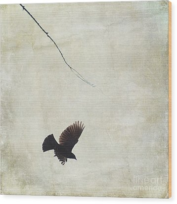 Wood Print featuring the photograph Minimalistic Bird In Flight  by Aimelle