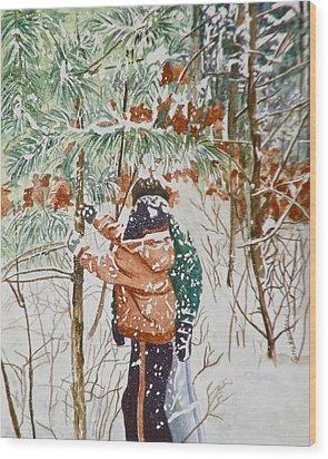 Minnesota Winter Wood Print by Terry Honstead