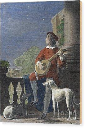 Minstrel, 19th Century Wood Print by Granger