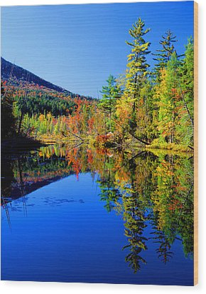 Mirror Image Wood Print