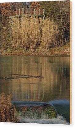 Mirror Spring 2 Wood Print by Douglas Barnett