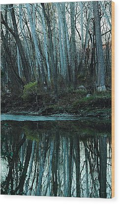 Mirrored Wood Print by Bruce Patrick Smith