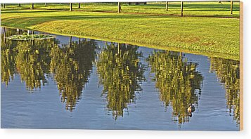 Mirroring Trees Wood Print by Heiko Koehrer-Wagner