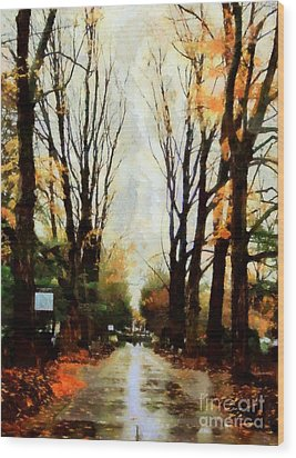 Wood Print featuring the photograph Missing You - Rainy Day Park by Janine Riley