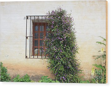 Mission Window With Purple Flowers Wood Print by Carol Groenen