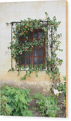 Mission Window With Yellow Flowers Vertical Wood Print by Carol Groenen