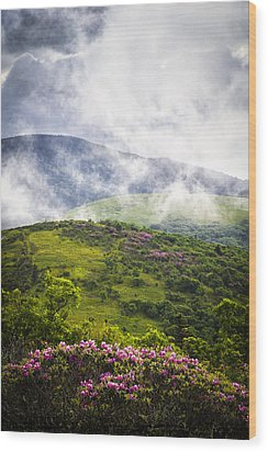 Rhododendrons - Roan Mountain Wood Print