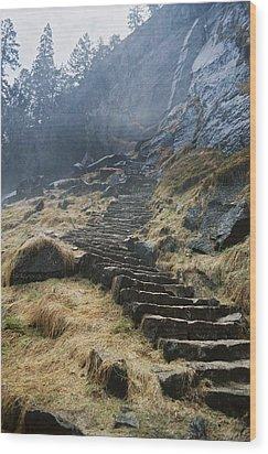 Mist Trail Wood Print